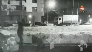 Смотреть видео Жестокое убийство арматурой, владельца клиники в Москве онлайн