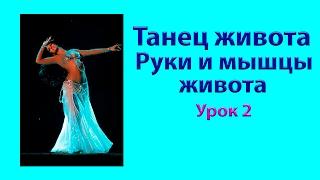 Танец живота. Урок 2 – Тренируем руки и мышцы пресса  в танце живота.