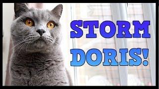STORM DORIS! | CHRIS & EVE
