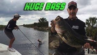 Huge Fish - Big Bass Makes Water Clearing Jumps