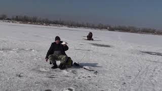 201802211052 г.Волжский ,зимняя рыбалка на Ахтубе.