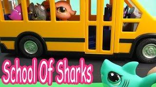 lps bus seat school of sharks series video movie littlest pet shop part 7 cookieswirlc