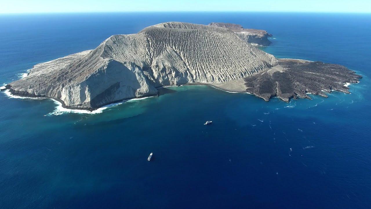 Картинки по запросу socorro island