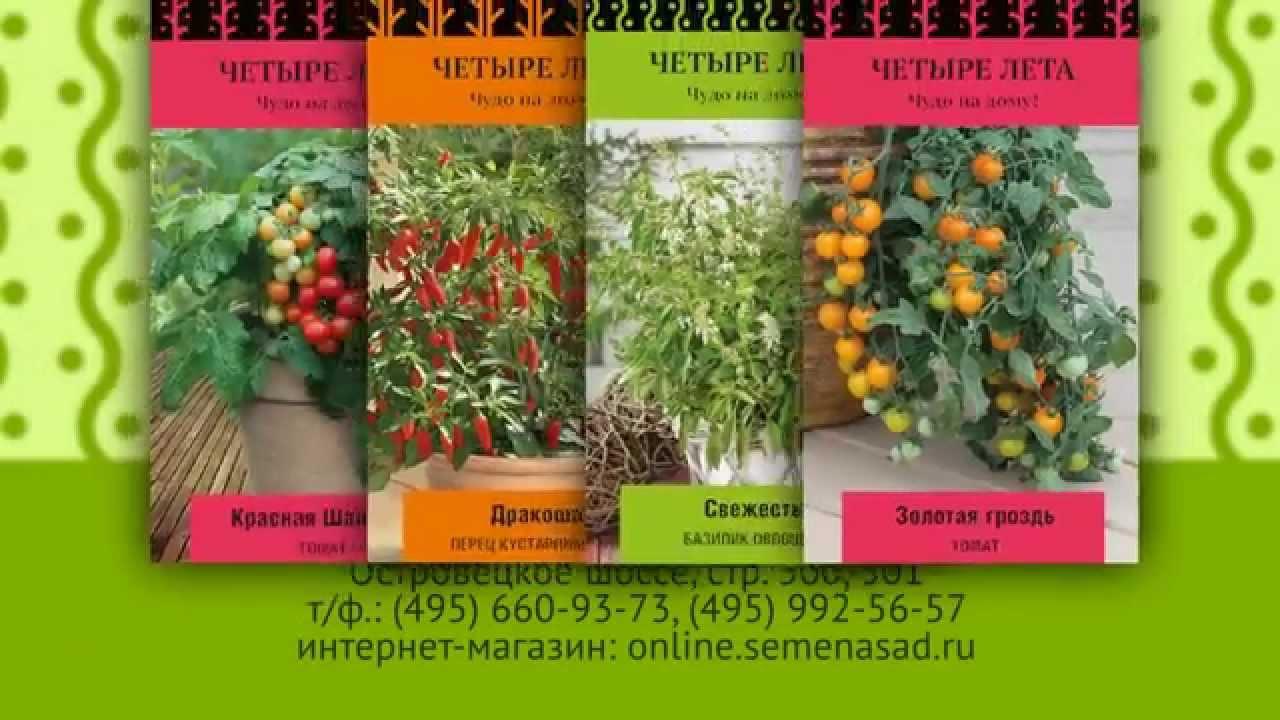В нашем каталоге вы можете выбрать и купить семена и саженцы катарантуса от 1 магазина, осуществляющих доставку по. Агрофирма поиск.