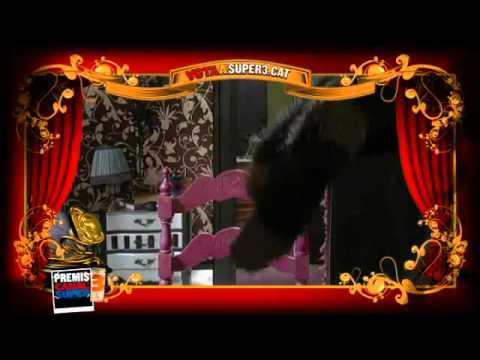 Premis Canal Super3 videomissatge de la Lila