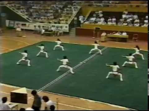中國武功 - Chinese Martial Arts Wushu Champions