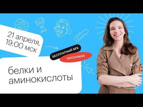 Белки и аминокислоты| Для студентов ВУЗов 2021 | Онлайн-школа СОТКА