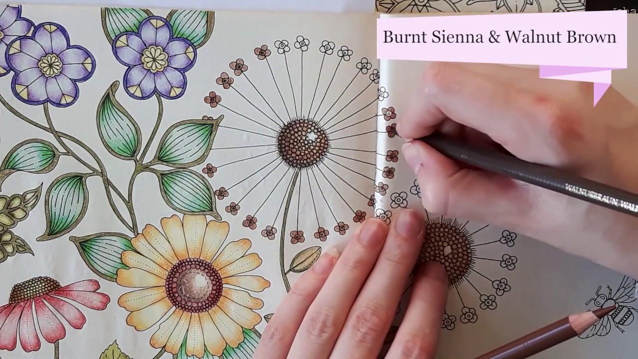 Coloring Tutorial Secret Garden Pt 5