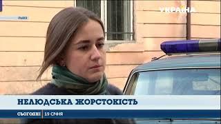 У Львові підлітки викинули кошеня з дев'ятого поверху