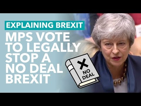 MPs Attempt to Legally Prevent No Deal - Brexit Explained