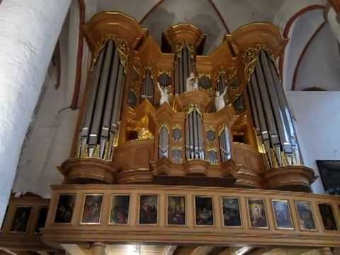 The Arp Schnitger organ of St Jacobi