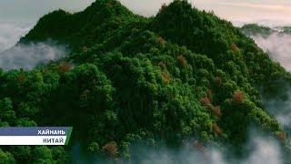 видео Туры в Айа-Напу из Барнаула