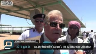"""محافظ جنوب سيناء: 30 فدانًا لـ""""مصر الخير"""" لإنشاء مزرعة برأس سدر"""