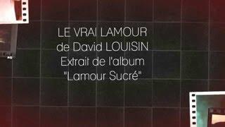 David louisin - le vrai l'amour - 974muzik