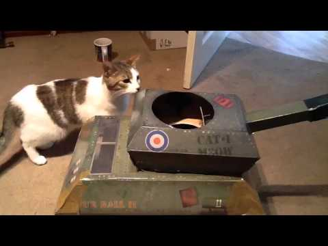 Cat Tank!