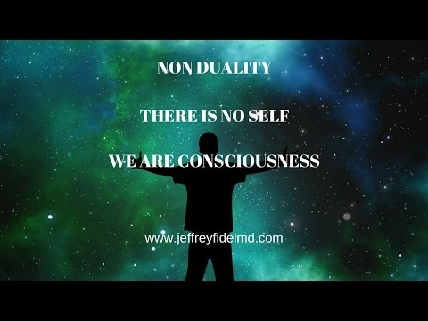 NON DUALITY| THERE IS NO SELF | OUR EXISTENCE CANNOT BE REDUCED INTO MENTAL CONCEPTS
