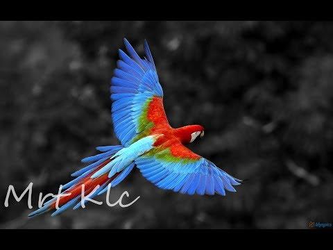 Mrt Klc :: Chillout \u0026 Ambient Mix ▸ 2