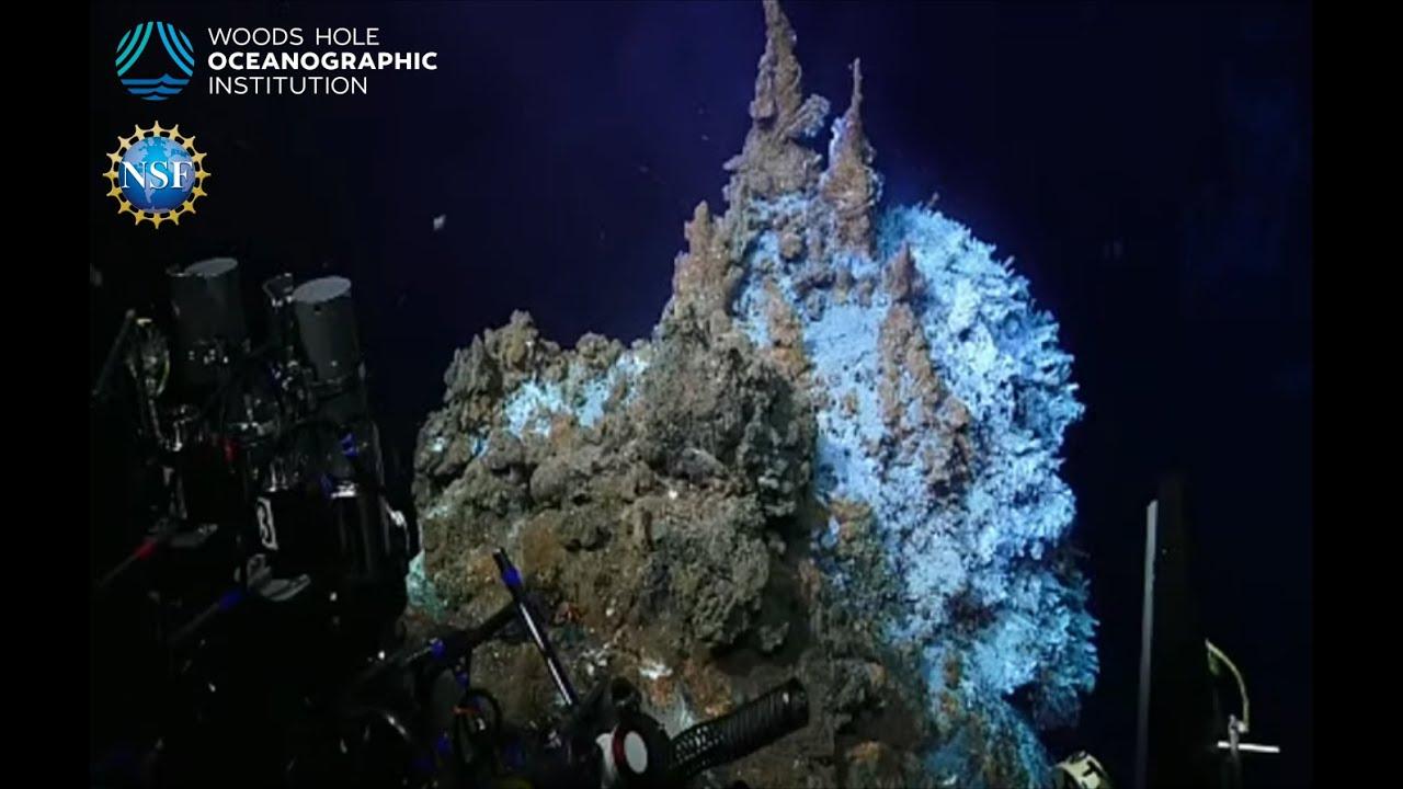 Dive Livestream Recording Links