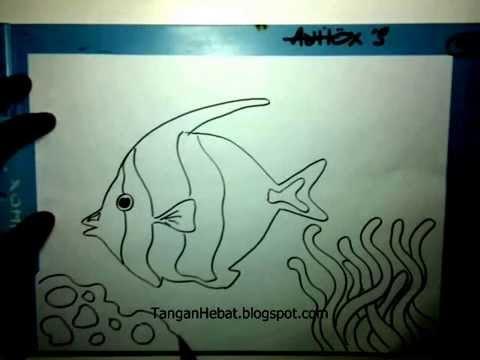 Video Belajar Menggambar Ikan Badut Youtube