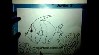 video belajar menggambar ikan badut