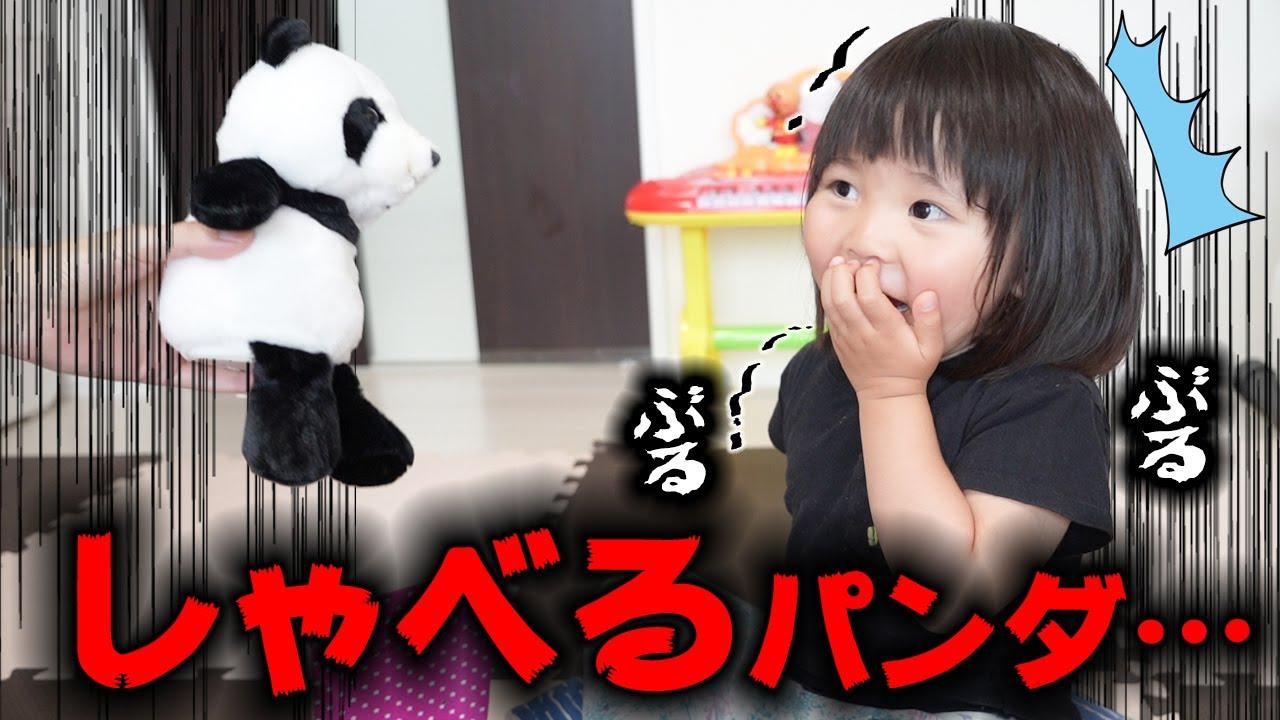 【戦慄】パンダがしゃべりだしたら恐怖で震えだした…ほんとごめん…😭【まねまねパンダ】 Talking panda