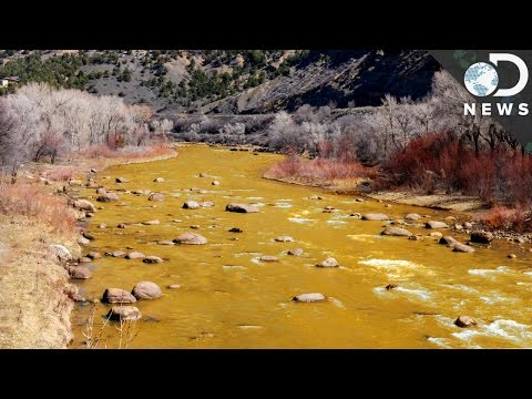 Why Did The Animas River Turn Orange?