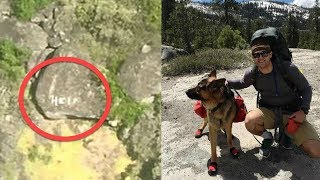This Hiker and His Dog Disappeared  Then 4 Days Later Search Teams Saw Something on a Rock