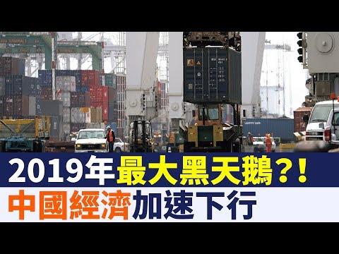 中國經濟加速下行  成2019年最大黑天鵝|新唐人亞太電視|20190112