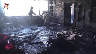 """Кадры с места убийства командира батальона """"Сомали"""" Гиви (Михаила Толстых)"""