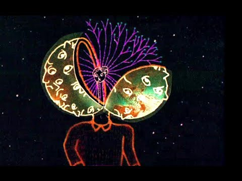 Is the Man Who Is Tall Happy? Official Trailer (HD) Documentary, Michel Gondry