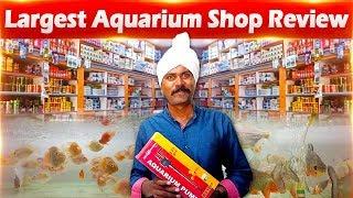 Largest aquarium shop review | flowerhorn shop, betta fish shop.
