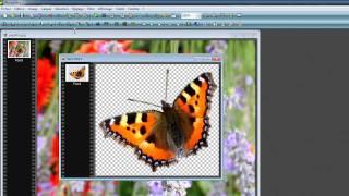 Détourer et incruster une image avec Photofiltre