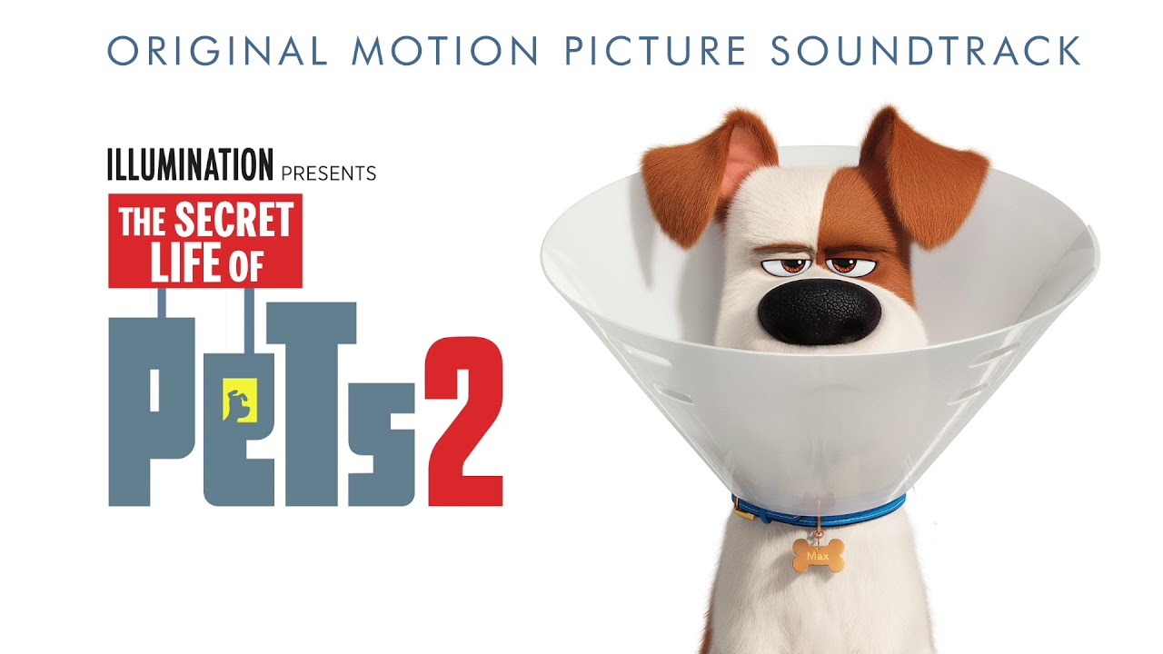 Panda From The Secret Life Of Pets 2 By Kevin Hart Youtube