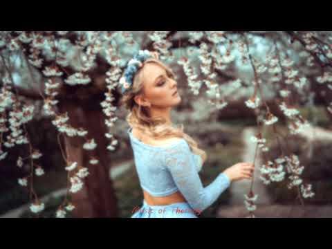 Best Vocal Female - Uplifting - Melodic - Progressive Trance Mix #80
