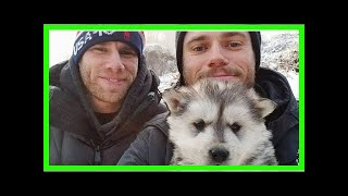 Gus Kenworthy Adopts Dog From South Korea: 'We Named Her Beemo!'
