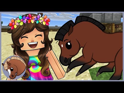 Introducting Horse Races & Horse Shows in HorseCraft