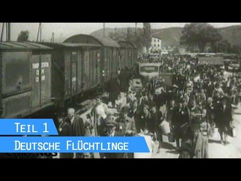 Heimatlos (1) - eine Dokumentation von Irmgard von zur Mühlen