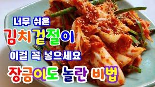 배추겉절이/김치겉절이 / 김치 /배추김치 / 겉절이 /…