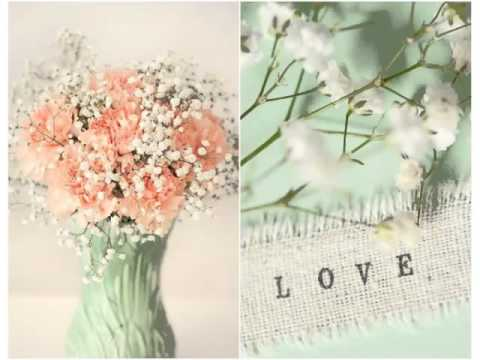 Carnation And Baby Breath Bouquet | Colorful Canation Flower Ideas