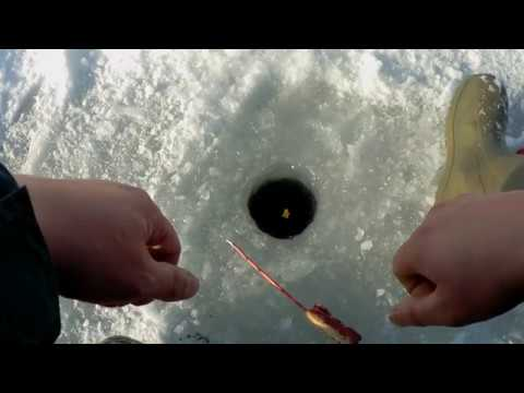 Зимняя Рыбалка ГЛУХОЗИМЬЕ на можайском водохранилище