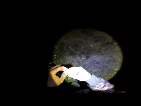 видео ловля крупного карася видео