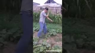 Баклажан прикол