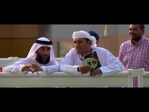 Dubai Racing - Racing In Dubai September Sale Preview
