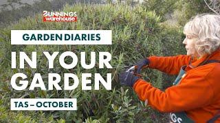 Gardening in October | Tasmania | Bunnings Garden Diary