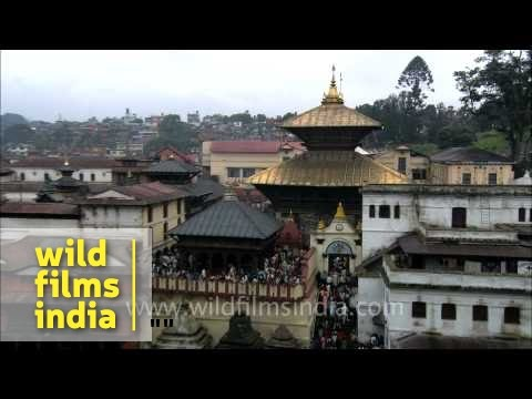 essay on pashupatinath