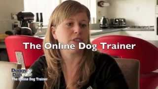 Prevent Your Dog From Barking - The Online Dog Trainer Testimonial