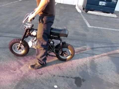 Beliebte Videos – Honda Z50A und Pocket Bike