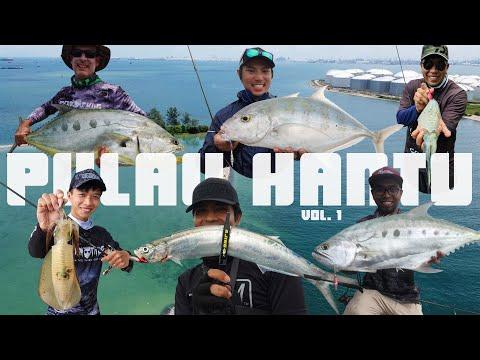Pulau Hantu Besar Singapore Fishing Vol.1   Light Jigging   Eging   Ajing