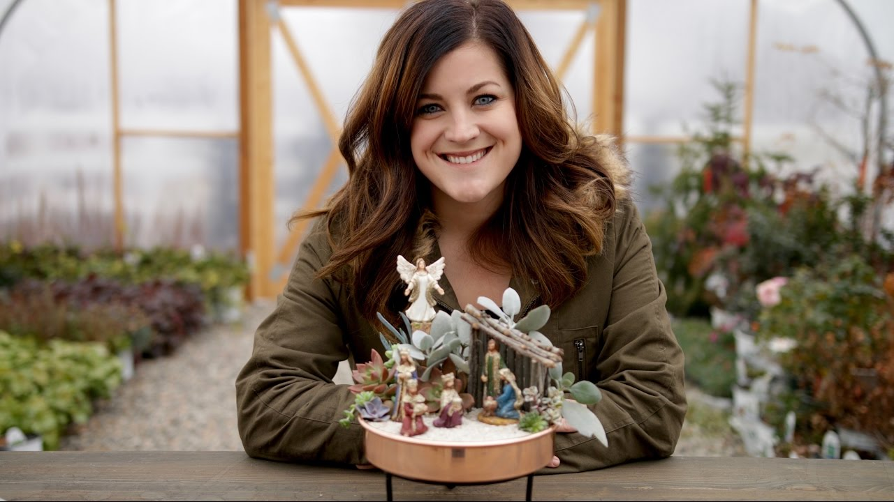 How I Care For My Succulent Nativity Garden Answer Youtube