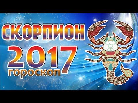 Василиса Володина официальный сайт